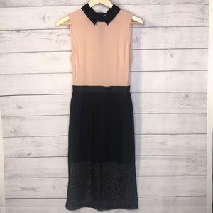 Sandro Pink & Black Silk Collared Sheath Dress